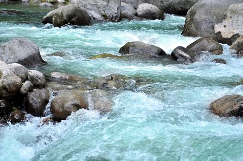 Himalayan Creek 6