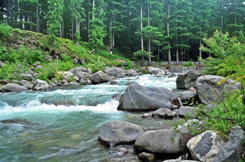 Himalayan Creek 8