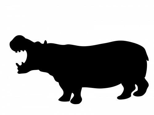 Hippo In Silhouette