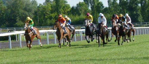 hipodromas,arklys,lenktynės,lenktynės,pmu,jockeys,arkliai,castera-verduzan,Žirgų lenktynės,echauffement,bet