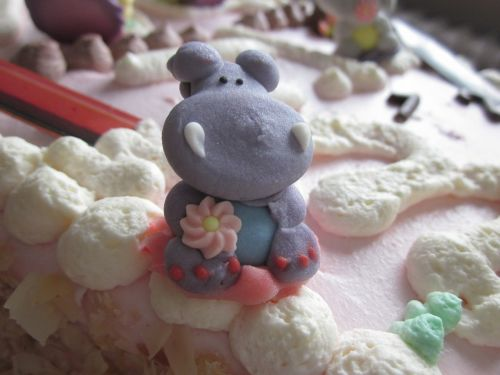 hippopotamus photo birthday cake