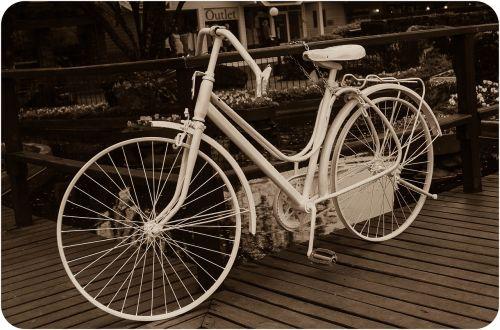 bike rosa black