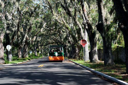 istorinis, magnolija & nbsp, ave, st, Augustine, florida, ispanų & nbsp, samanų, gyvenimas & nbsp, ąžuolo & nbsp, medis, orientyras, ispanų, usa, amerikietis, turizmas, miestas, vaizdingas, vieta, žinomas, peizažas, lauke, Miestas, kelionė, istorinis, istorinis magnolijos ave