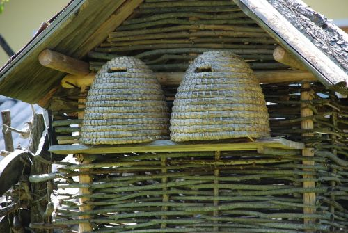 hive honey bee bee keeping