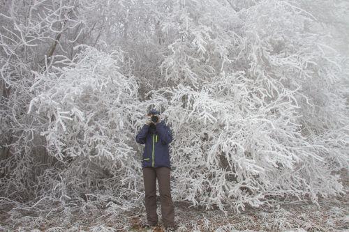 hoarfrost winter photographer