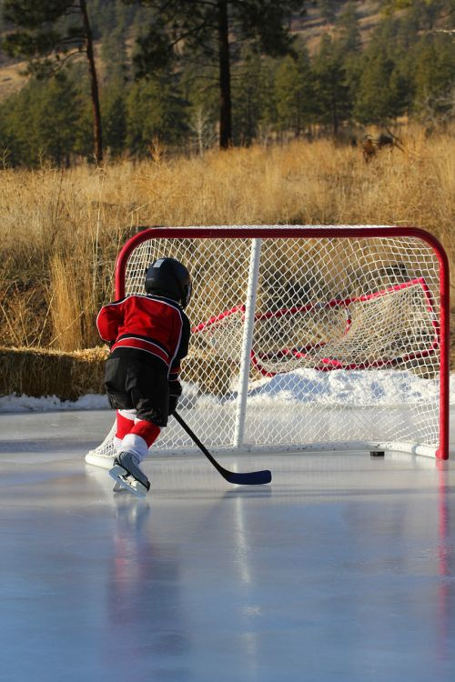 hockey outdoor rink net