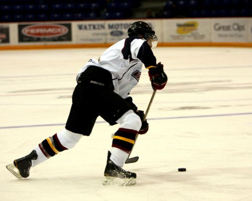 hockey hockey puck ice
