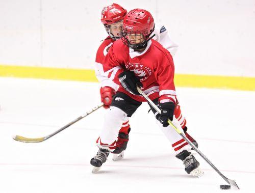 hockey sport hockey stick