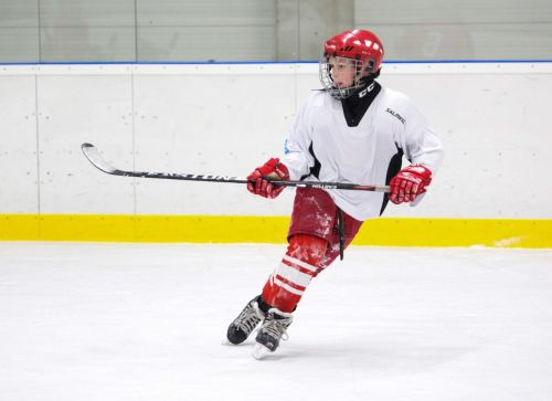 hockey player game