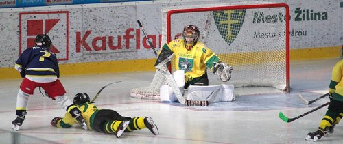hockey  goalkeeper  action