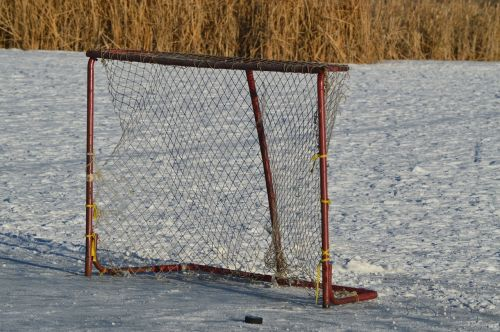 hockey net outdoor puck