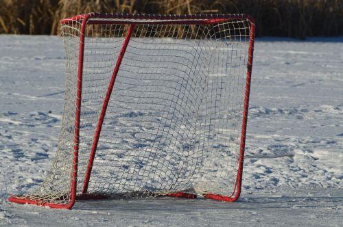 hockey net outdoor puck