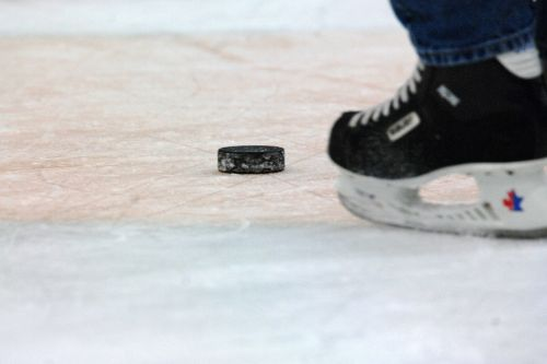hockey puck skater ice
