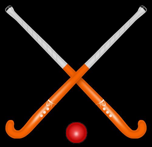hockey stick hockey shinny