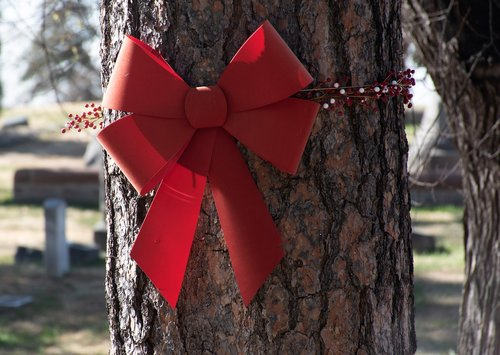 holiday decor  red bow  holly
