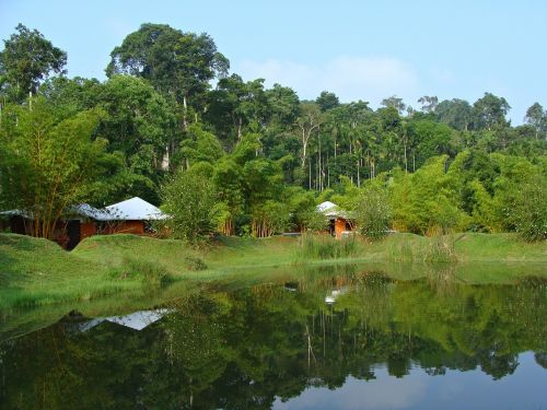 holiday home resort greenery