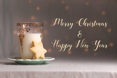 holidays  christmas  new year