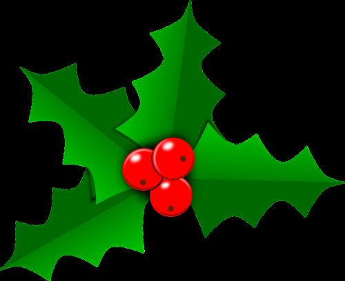 holly christmas leaf