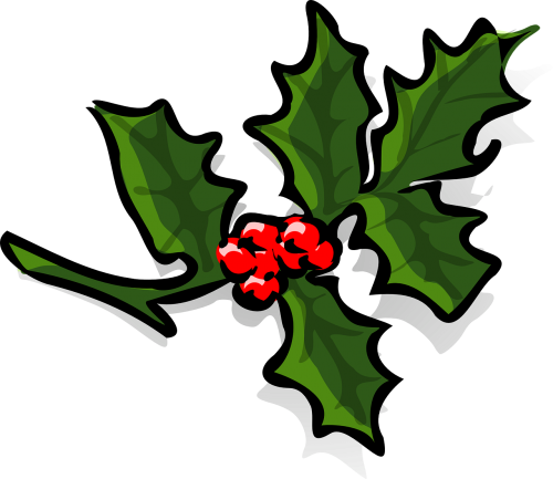 holly holly berries christmas