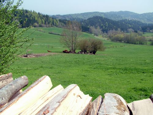 Wood, Meadows And Woodland