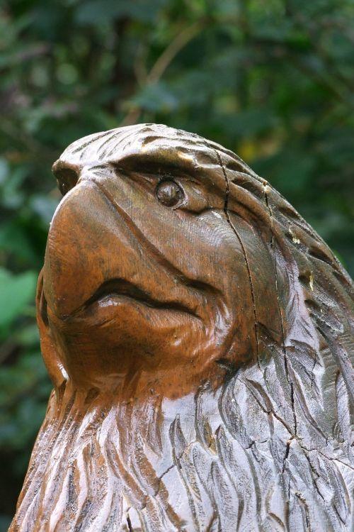 holzfigur bird head