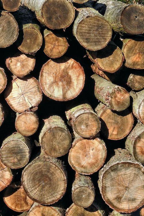 holzstapel texture wood