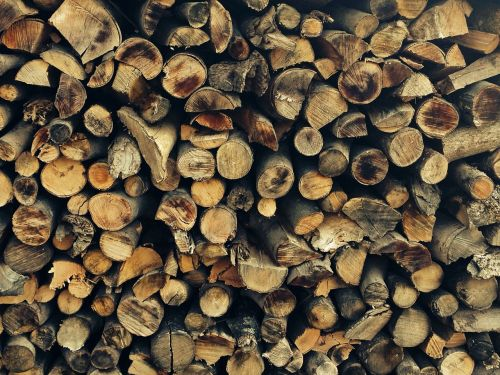 holzstapel,firewood,wood,tree trunks,like,forest