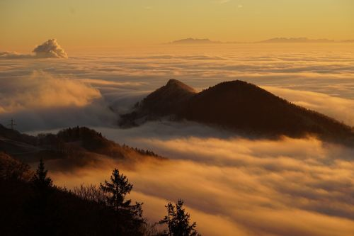 homberg clouds selva marine