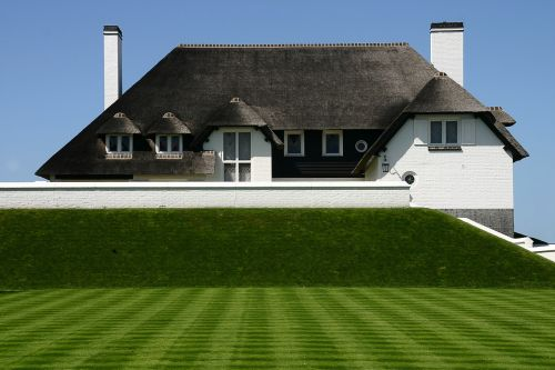 home thatched roof green lawn