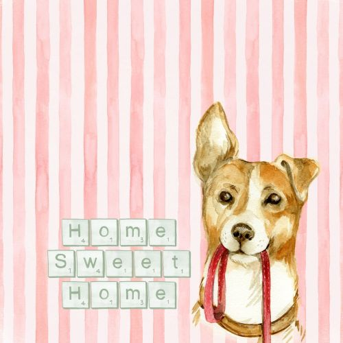 home home sweet home sentiment