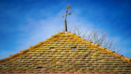 home weatherman roof