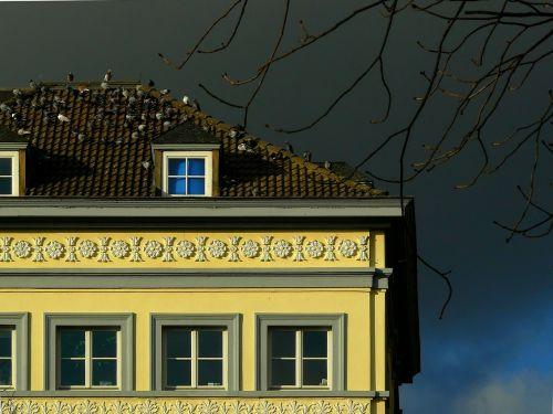 home building window
