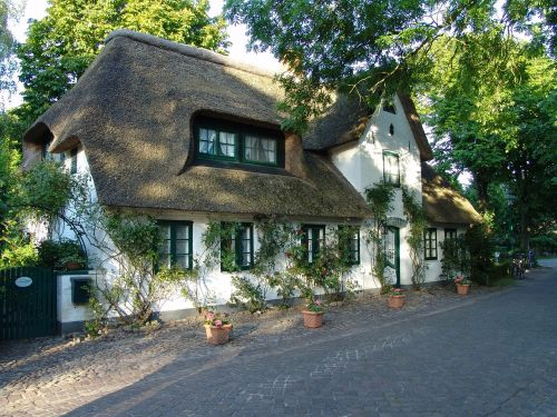 home reed thatched roof