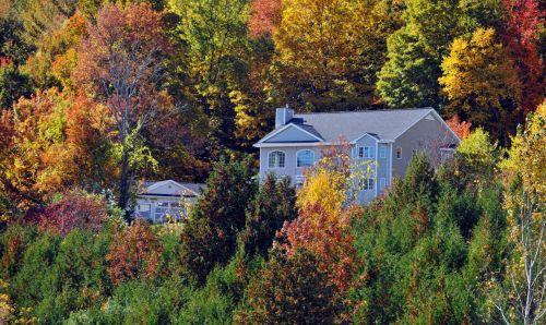 Home In Autumn Foliage