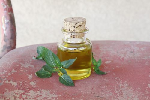 Homemade Peppermint Infused Oil