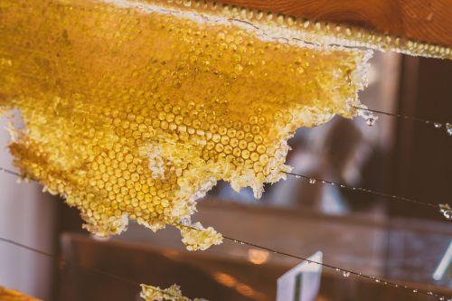 honey bee syrup