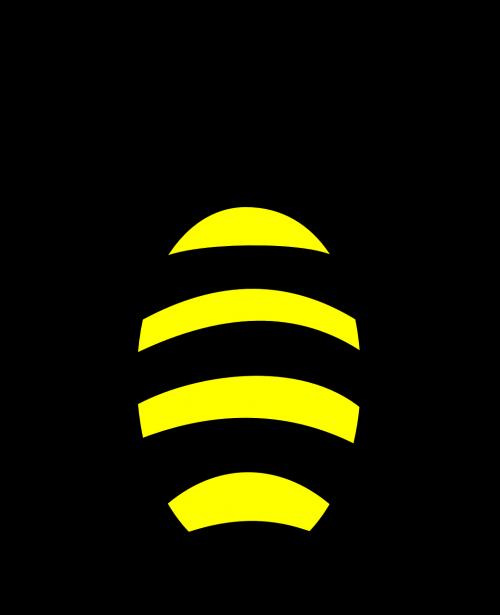 honey bee bug