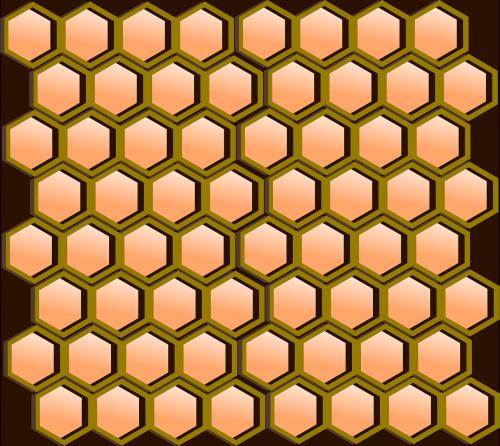 honeycomb comb hexagonal