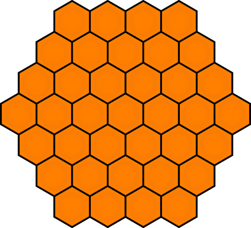 honeycombs honey bee