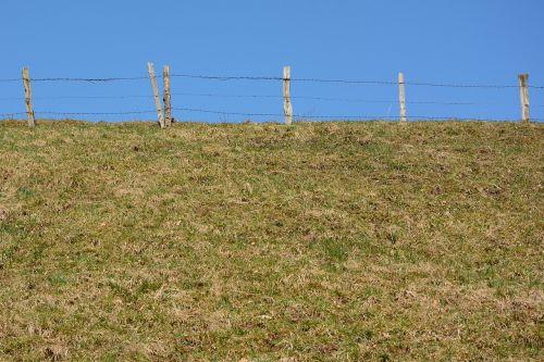 horizon fence border