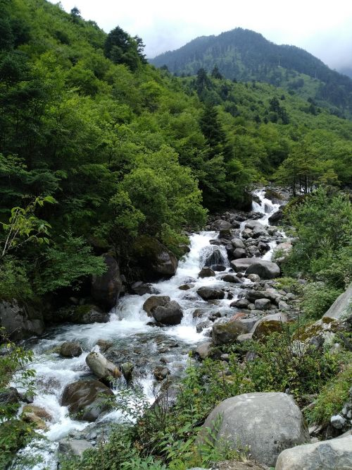 horn river green scenery streams