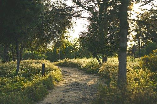 horova parkı  yiğitler burcu parkı  lefkosia