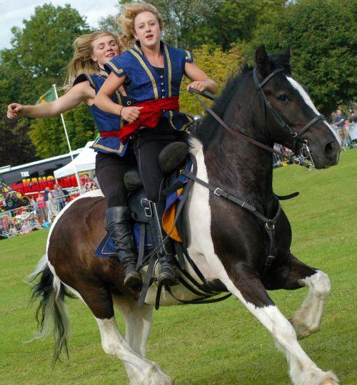horse stunt show