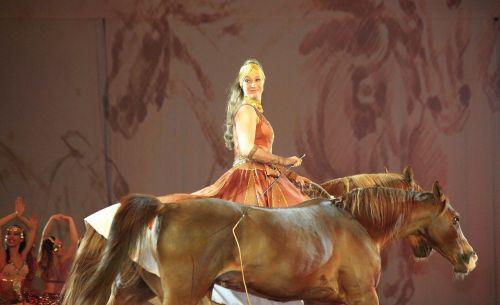 horse show horse show