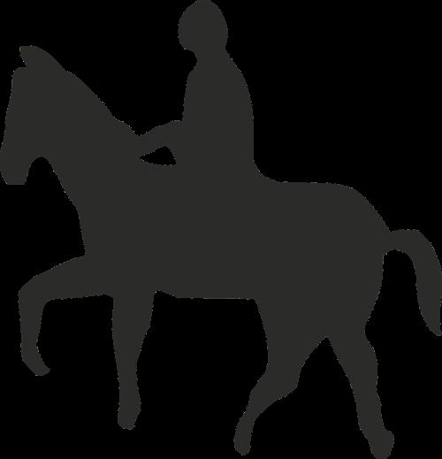 horse man riding