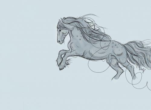 horse gallop speed