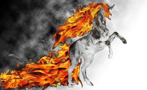 horse fire fog
