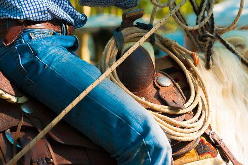 horse saddle jumper