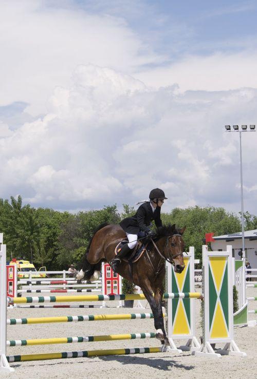 horse jockey sport
