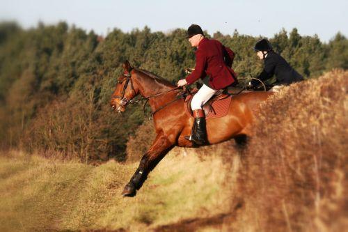 horse jump equestrian